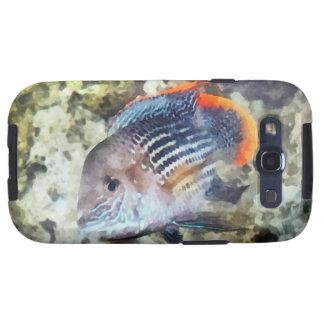 Fish - Rainbowfish Galaxy S3 Covers