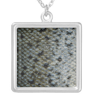 Fish Scales 2 Silver Plated Necklace