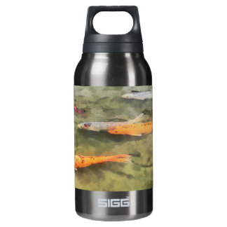 Fish - School Of Koi': SIGG Thermo 0.3L Insulated Bottle