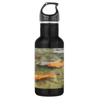 Fish - School Of Koi': Stainless Steel Water Bottle