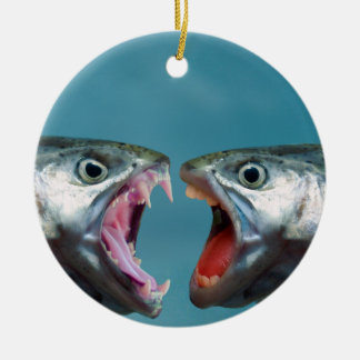 Fish Screaming at Each Other in a Yelling Match Ceramic Ornament