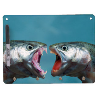 Fish Screaming at Each Other in a Yelling Match Dry Erase Whiteboard