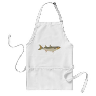 Fish - Sea Mullet - Mugil dobula Adult Apron