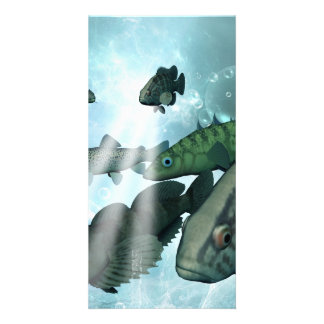 Fish shoal with bubbles and light effects card