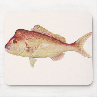 Fish - Snapper - Chrysophrys guttulatus Mouse Pad