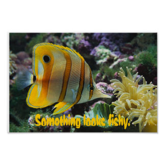 Fish, Something looks fishy. Poster