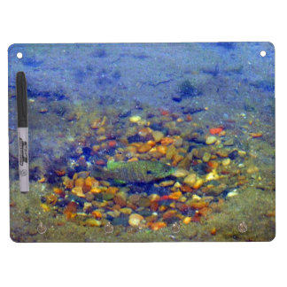 Fish Spawning Bottom Lake Dry Erase Board