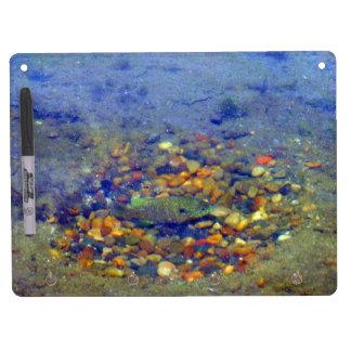 Fish Spawning Bottom Lake Dry Erase Board