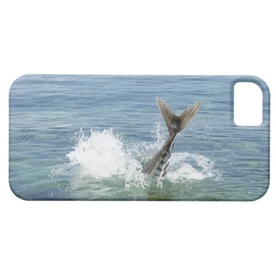 Fish splashing in the sea iPhone SE/5/5s case