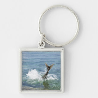 Fish splashing in the sea keychain