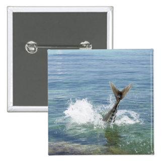 Fish splashing in the sea pinback button