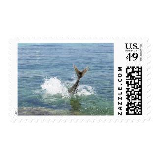 Fish splashing in the sea postage stamp