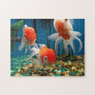 Fish Tales Jigsaw Puzzle