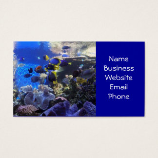 Fish tank 2 business cards
