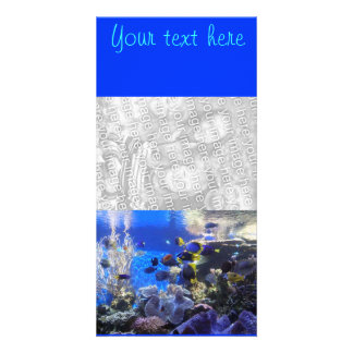 Fish tank 2, Your text here photo card
