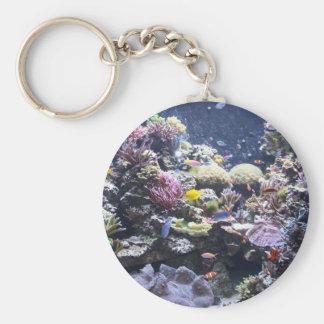 Fish Tank Basic Round Button Keychain