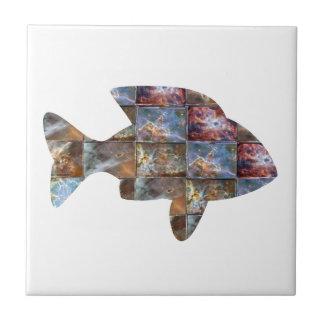 FISH CERAMIC TILE