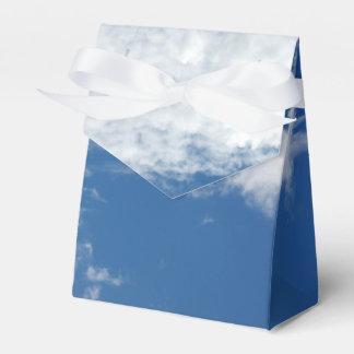 Fishbone Cloud Favor Box