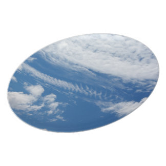 Fishbone Cloud Melamine Plate