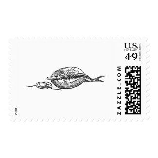 Fishbones and Life Preserver Postage