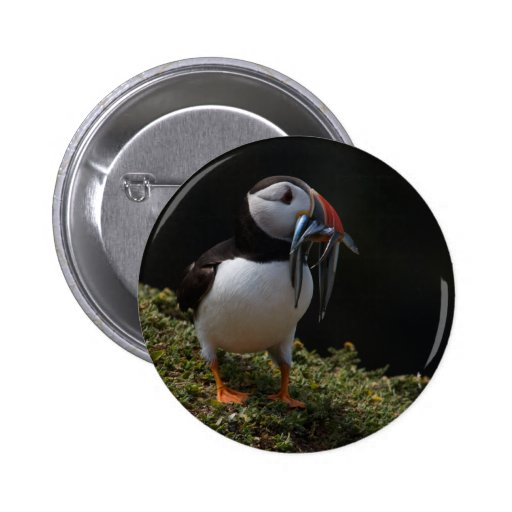 Fisher Puffin Button