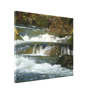 Fisherman River Steelhead Trout Fly Fishing Rapids Canvas Print