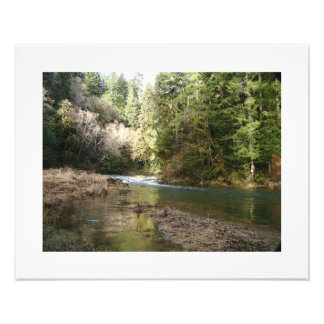 Fisherman River Steelhead Trout Fly Fishing Rapids Photo Print