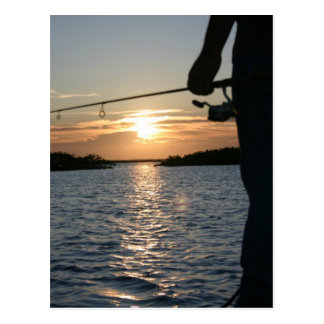 Fisherman's Sunset Postcard