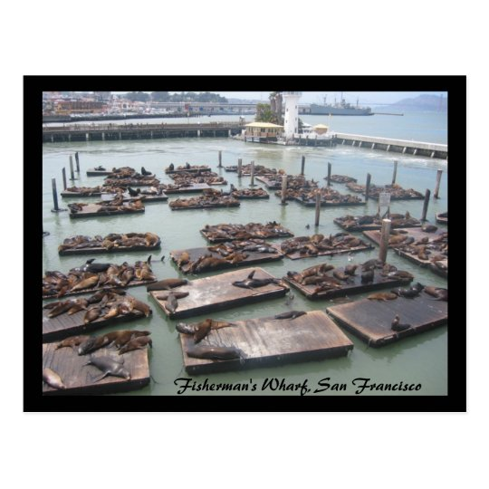 fisherman's wharf postcard