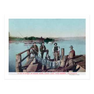 Fishermen Showing the Day's Catch Postcard