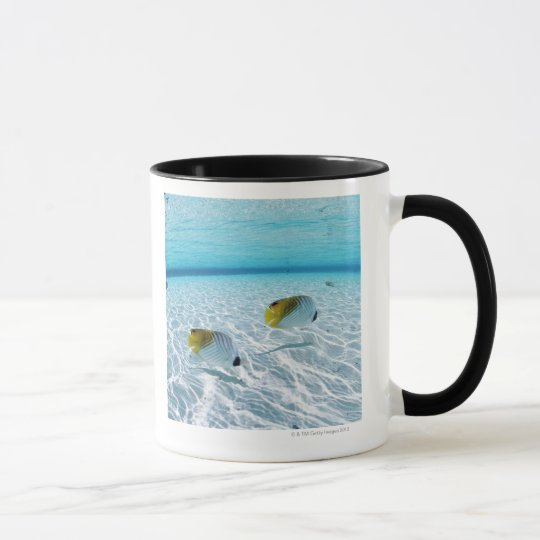 Fishes in the sea 2 mug