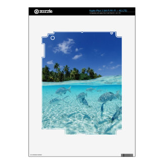 Fishes in the sea iPad 3 skin