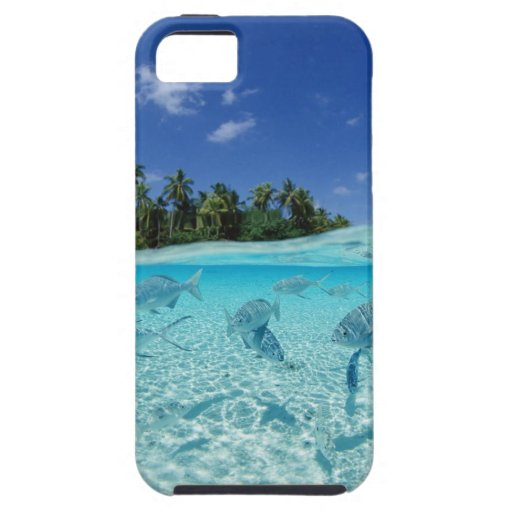 Fishes in the sea iPhone 5 cases