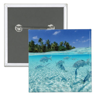 Fishes in the sea pinback button