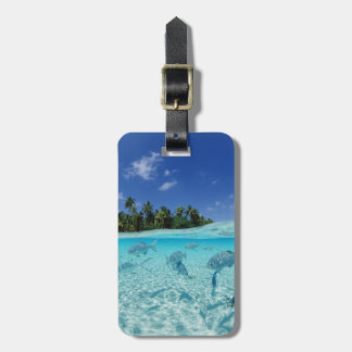 Fishes in the sea tag for luggage