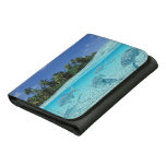 Fishes in the sea wallets
