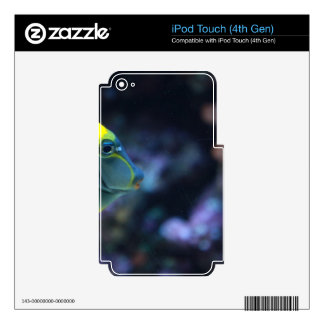 Fishes iPod Touch 4G Skin