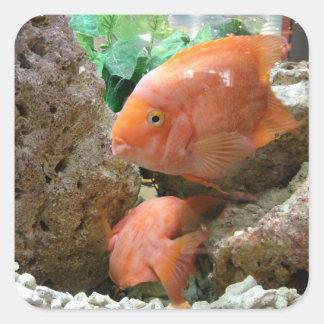 Fishes Square Sticker