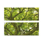 Fisheye Maze Of Branches Two Panel Wrapped Canvas Gallery Wrap Canvas