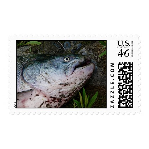 Fishhead! Roly Poly Fish Head Postage Stamp