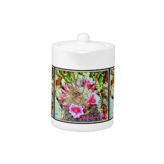 Fishhook Cactus with Pink Blooms Tea Pot