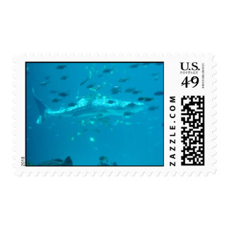 Fishies Postage Stamps