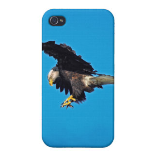 Fishing American Bald Eagle Wildlife Photo 2 Case For iPhone 4