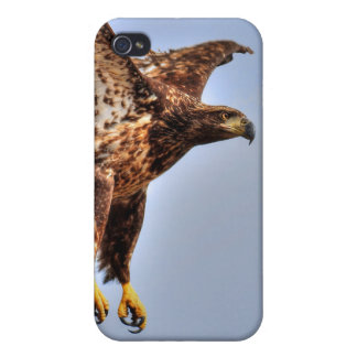 Fishing American Bald Eagle Wildlife Photo Covers For iPhone 4
