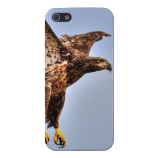 Fishing American Bald Eagle Wildlife Photo iPhone SE/5/5s Cover