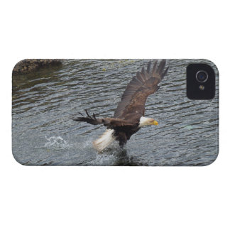 Fishing Bald Eagle & Coastal Waters iPhone Cases iPhone 4 Case