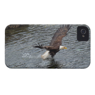 Fishing Bald Eagle & Coastal Waters iPhone Cases iPhone 4 Cases