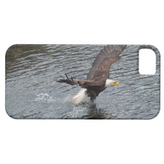 Fishing Bald Eagle & Coastal Waters iPhone Cases iPhone 5 Cases