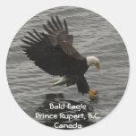 Fishing Bald Eagle Gift Set Sticker