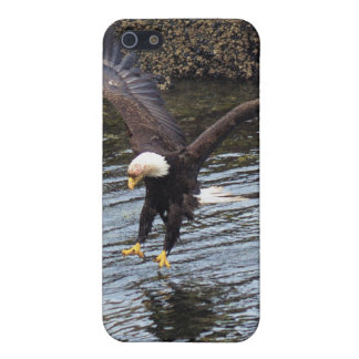 Fishing Bald Eagle Nature Scene iPhone Cases Cases For iPhone 5